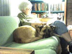 therapy dog, reading to robbie