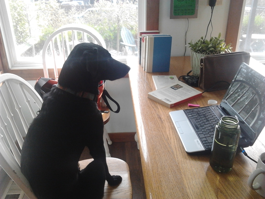 The blog's new editor